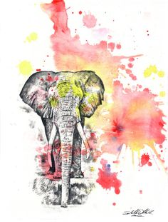 Elephant Art Animal Watercolor Painting . I like the elephant but maybe not the watercolor
