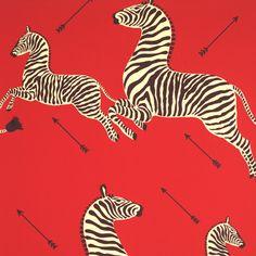 Zebra Wallpaper!