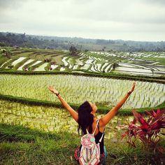 Prvu zetvu sam ispratila na redu je druga  . . . . #jungletribe #junglefotograf #jungletravel  Prvu zetvu sam ispratila na redu je druga  . . . .  #jungletribe #junglefotograf #jungletravel #wanderlust #travelphoto #visiting #travelphotography #tagsta_travel #beauty #nature #ilovetravel #writetotravel #instatravelling #instavacation#travelblogger #wanderlust #ilovetravel #travelingram #exploreasia #indonesia #indonesia_photography #balivibes #baliisland #visitbali #travelbali #ricepaddies…
