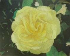 Yellow flower, Colored Pencil on Ampersand board.