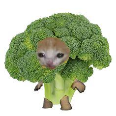 Broccoli, Garden Sculpture, Humor, Random, Memes, Funny, Outdoor Decor, Anime, Food Items