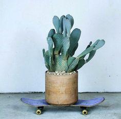 Passez au vert [côté déco]. cactus on a skateboard.