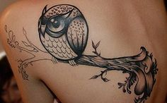 like this owl tat a lot