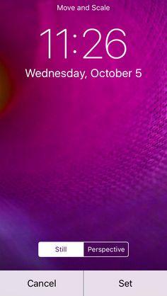 SkyLip — Backdrop Category Uploads - Appography Pro App  ...
