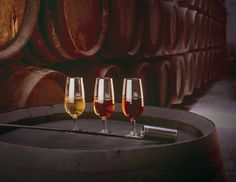 If there were justice in the wine cosmos Spain's Sherry would be one of the world's best-loved wines yet it is largely misunderstood and underappreciated. Tostadas, Wine Tasting Near Me, Wine Coolers Drinks, Wine Safari, Barolo Wine, Spanish Wine, Spanish Tapas, Wine Sale, Wine Bottle Opener