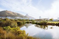 In these eight coastal getaways, award-winning restaurants, stunning hotels, and jaw-dropping ocean views do their coordinates serious justice. Stuff To Do, Things To Do, V&a Waterfront, City Pass, Table Mountain, Nature Reserve, Walking Tour, Cape Town, Travel Around