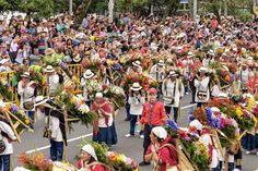 Desfile de Silleteros de Medellín, Versión Nº58
