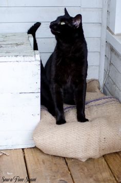 Using Burlap in Unexpected Ways – a Rug and a Cat Bed | Sew A Fine Seam