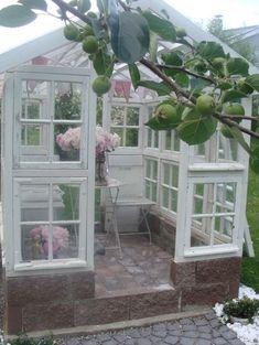 kasvihuone,vanhat ikkunat,puutarha