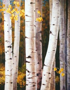 Fall Quaking Aspen Trees White Gold by sagewest