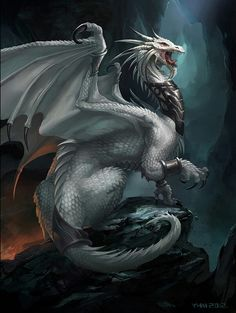 Dragon de batalla blanco