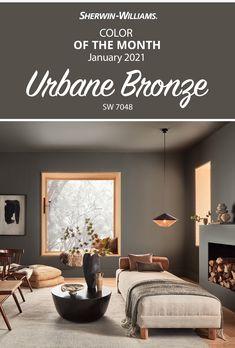 Brown Paint Colors, Modern Paint Colors, Office Paint Colors, Dining Room Paint Colors, Bedroom Wall Colors, Paint Colors For Home, Living Room Colors, House Colors, Modern Living Room Paint