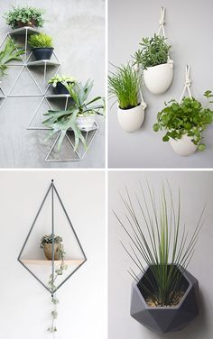 10 Modern Wall Mounted Plant Holders To Decorate Bare Walls 10 Modern Wall Mounted Plant Holders To Decorate Bare Walls,home sweet home Here are 10 examples of stylish and modern wall mounted planters that. Indoor Garden, Indoor Plants, Home And Garden, Garden Modern, Garden Planters, Wall Mounted Plant Holder, Decoration Plante, Plant Holders, Wall Candle Holders