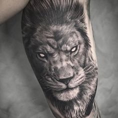 40 lion forearm tattoos for men manly ink ideas tattoo 39 s pinterest lion forearm tattoos. Black Bedroom Furniture Sets. Home Design Ideas