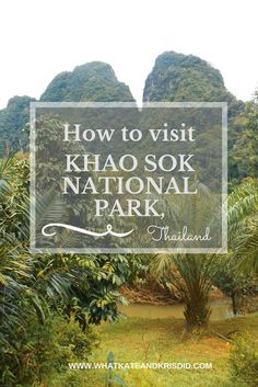 How to travel to Khao Sok national park, Thailand, where to stay and what to do there.