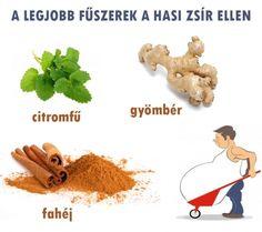 Hasi zsír ellen | Socialhealth Alternative Therapies, Jaba, Eating Well, Healthy Lifestyle, Health Care, Herbs, Food, Drink, Herb Garden
