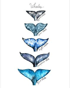 Watercolor Whale Tails - Whale Tails Wall Decor Nautical Ocean Print Humpback Whale Whale Poster Whale Art Kids Boy Room Whale Tail Painting - Watercolor Whale Tails – Whale Tails Wall Decor Nautical Ocean Print Humpback Whale Whale Poster W - Whale Drawing, Whale Painting, Watercolor Whale, Watercolor Paintings, Watercolour, Wal Art, Whale Illustration, Whale Decor, Whale Tattoos
