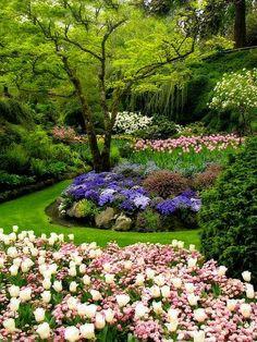 Secret garden design ~ Dreamy Nature