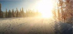Sie sollten nur mit Schneereifen, auch bekannt als Winterreifen, bei den extremsten winterlichen Wetterkonditionen fahren. Im Winter kann man viele Unfälle und Autos in Gräben sehen, was teilweise aufgrund der falschen Reifenwahl geschieht. Country Roads, Snow, Outdoor, Autos, Winter Tyres, Electric Vehicle, Weather Vanes, Trench, Outdoors