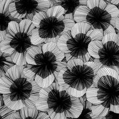 black white - beQbe