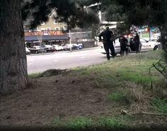 Citizen journalist sues police, TriMet for grabbing phone while she filmed officers making arrest | OregonLive.com