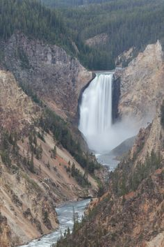 """""""Moran's Legacy""""  This image is of the Lower Falls of the Yellowstone River. At 308 feet is the tallest waterfall in the Rocky Mountains of the United States. Lower Falls is in the Grand Canyon of the Yellowstone River. This vantage point is on a cliff overlooking the canyon and was made famous by the massively influential painter Thomas Moran in the late 1800s.  www.backcountryjourneys.com/blog/2015/8/morans-legacy"""