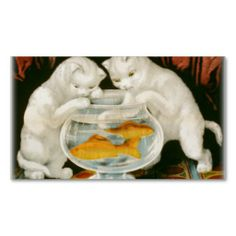 white kittens fishing in a gold fish bowl
