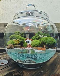 26 amazing diy mini terrarium garden projects and ideas 16 Related