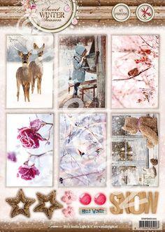 Studio Light serie:  ---Sweet Winter Season---  Photos