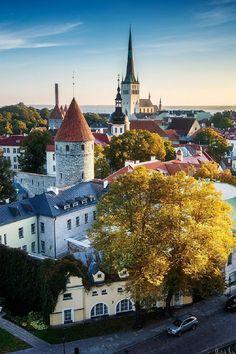 Tallin, Estonia by Stanley Chen Xi
