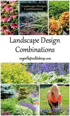 A Book Review: Landscape Design Combinations | esigning and planning out a garden can be a challenging task. Sometimes just knowing where to start can be a struggle. If you are anything like me, there is the perfect guide for you. Landscape Design Combinations by Lee Miller is that garden compass you have been looking for.