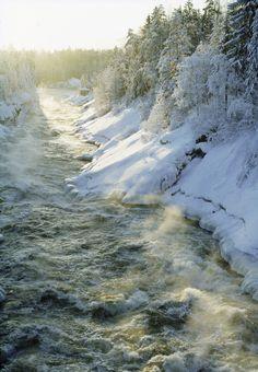 Imatra rapids in winter Kuva: Imatran kaupunki Midnight Sun, Winter Beauty, Helsinki, Homeland, Mother Earth, Great Places, Winter Wonderland, The Good Place, Roots