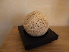 Rêve de Pégase, lampe d'ambiance astrale en noix de coco sculptée