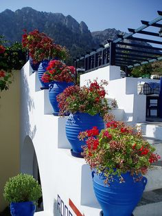 Flowers on the stairs in Zia, Kos Island, Greece