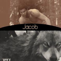 Twilight saga ~ Jacob Black