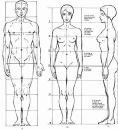 imagenes para modelar un cuerpo femenino