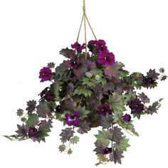 This Morning Glory Silk Floral Hanging Basket will remain in bloom throughout the day, even if we think that they bloom just in the morning. Funnel-shaped petals surrounded by colorful and pointy leaves create the perfect contrast, whether you display them outdoors on your front porch or in an indoor patio setting. This authentic styled arrangement is sure to please, without the hassle of watering, wilting petals, or pesky insects. $46.99