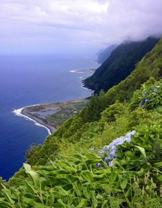 Sao Jorge island, Azores, Portugal by Guillaume Baviere [