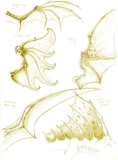 Dragon anatomy- wing study by turel.deviantart.com