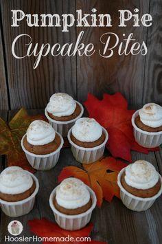 Pumpkin Pie Cupcake Bites baked in micro mini cups! Recipe on HoosierHomemade.com
