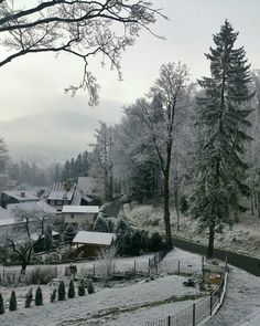 Picture taken – November 30.2014 |12:25 | by XperiaT – phoneography | - First Snow. A Place in Time This is my Window View. This is a continuation of Project 52 ( taking 1 picture a week,to see w...