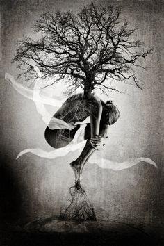 Tree of Life - Medium Edition - Photography,  60x90 cm ©2013 par Erik Brede -  Photographie, Manipulé