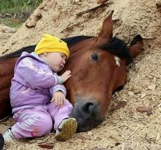 Horse and Man - Exploring the bond between equines and their people. Cute Horses, Pretty Horses, Horse Love, Beautiful Horses, Animals Beautiful, Baby Horses, Beautiful Babies, Animals For Kids, Cute Baby Animals