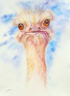 Buy Oliver the Ostrich, Watercolor by Arti Chauhan on Artfinder. Discover thousands of other original paintings, prints, sculptures and photography from independent artists.