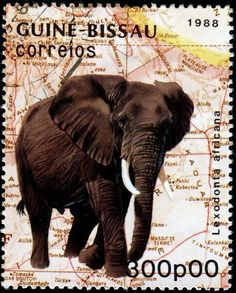 - Stamp Community Forum - Page 8 Elephant Love, Elephant Art, Postage Stamp Design, Postage Stamps, Elephants Never Forget, Going Postal, Love Stamps, Good Buddy, Fauna