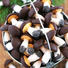 They look very realistic with the dark chocolate ganache covered mushroom heads, white glaze dipped stems and touched up roots. Cocoa Chocolate, Melting Chocolate, Chocolate Ganache, Chocolate Chips, Baking Recipes, Cookie Recipes, Dessert Recipes, Baked Mushrooms, Stuffed Mushrooms