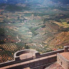 Jaén, tierra de castillos, olivos y sierra. Un ejemplo: Segura de la Sierra. Jaen is a land of castles olives and mountains. The village Segura de la Sierra as an example. Sierra, City Photo, Instagram Posts, Olive Tree, Olive Oil, Castles, Scenery, Fotografia, Pictures
