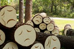 Poor Little Trees: Cut Down Forest Trees With Sad Faces