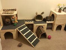 Diy Bunny Cage, Diy Bunny Toys, Bunny Cages, Rabbit Cages, Rabbit Toys, Pet Rabbit, Indoor Rabbit House, Indoor Rabbit Cage, Rabbit Habitat