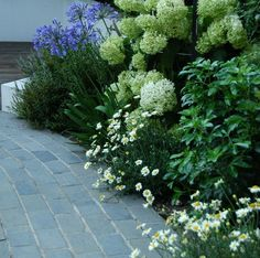 Black Limestone Setts look very effective when installed alongside matching paving as an edging or border but, equally, they are stunning when used on their own to create a path or walkway - we think the planting in this image complements the stone perfectly.